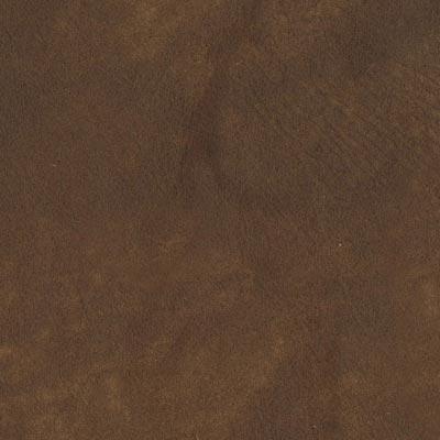 Sequoia SE4001