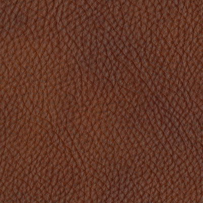 Etrusco Leather PE03